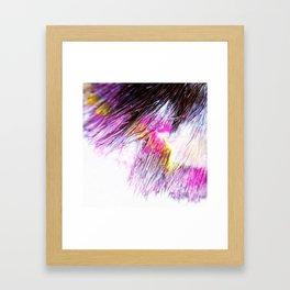 Paintbrush Bristles Macro Photography Framed Art Print