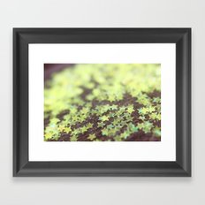 Scatter Your Wishes Framed Art Print