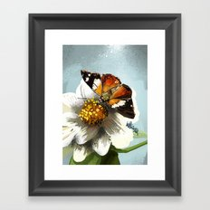 Butterfly on flower 12 Framed Art Print