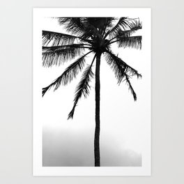 Tropical Darkroom #448 Art Print