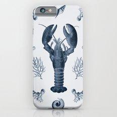 vintage sea life iPhone 6s Slim Case