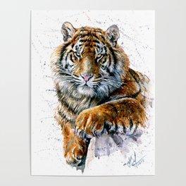 Tiger watercolor Poster