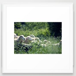 Ewe Are Sheep Framed Art Print
