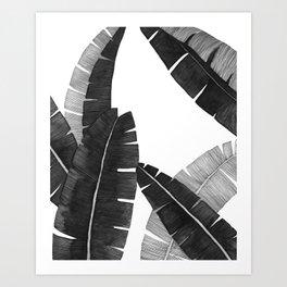 Banana Leaves BW Art Print