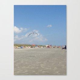 #41 Canvas Print