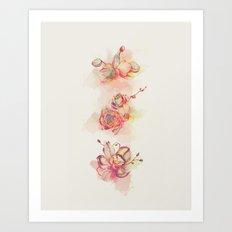 Roses & Orchids Art Print