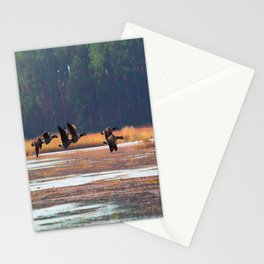 Flying Canadian Geese Stationery Cards