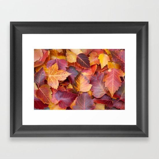 Autumn's Carpet Framed Art Print