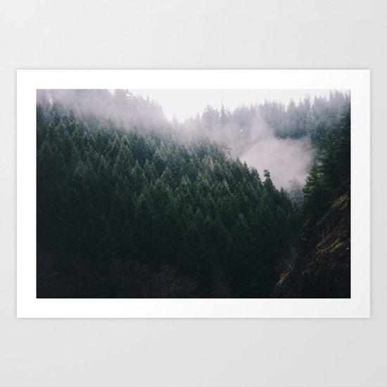 Forest Fog V Art Print