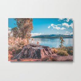 Lake Te Anau with big tree stump on the foreground, Fiordland, South Island, New Zealand Metal Print