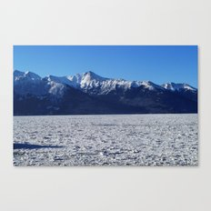 Frozen Alaska Canvas Print