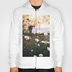 Everything's coming up daisies Hoody