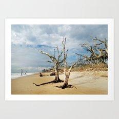 Hobcaw Boneyard Beach Morning Art Print
