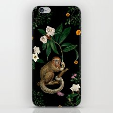 Monkey World: Amber-Ella iPhone & iPod Skin