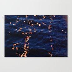 Alternate night sky Canvas Print