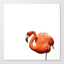 Mean Flamingo Canvas Print
