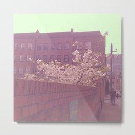 Blossom, Light Metal Print