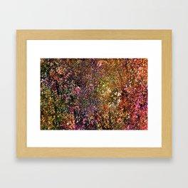 Abstract 295 Framed Art Print