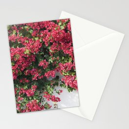 socal bougainvillea Stationery Cards