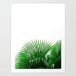 Tropical Vibes #8 Art Print