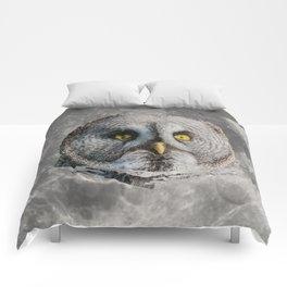 MOON OWL Comforters