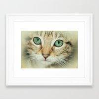 alisa burke Framed Art Prints featuring FELINE BEAUTY by Catspaws