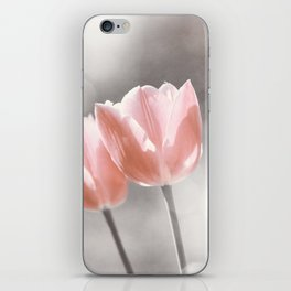 Peach Coral Tulip Photography, Peach Flower Photograph, Coral Grey Nursery Photo Print iPhone Skin