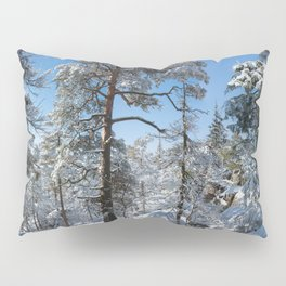 Winter in March Pillow Sham