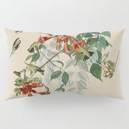 Vintage Hummingbird Illustration - Birds of America Pillow Sham