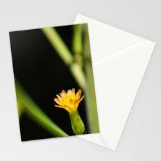 Orange Wildflower Stationery Cards