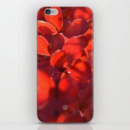Vermilion iPhone Skin