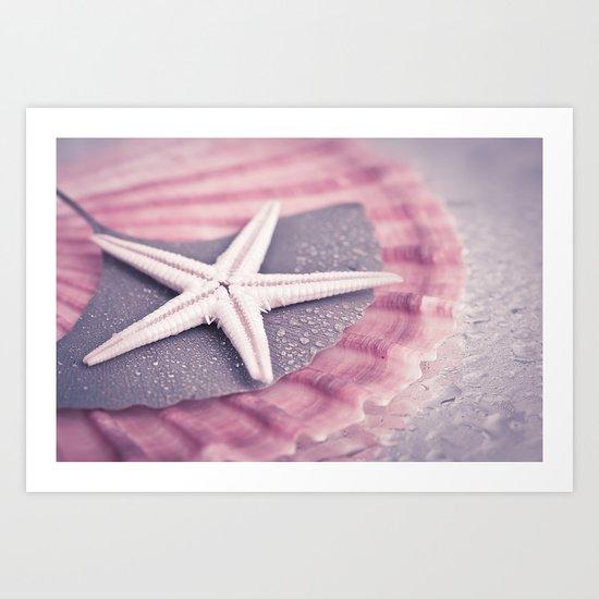MARITIME STILL LIFE with sea shell and starfish Art Print