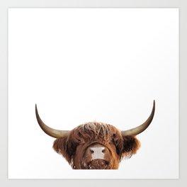 Highland cow, brown cow Art Print