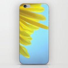 Yellow Chrysanthemum 301 iPhone & iPod Skin