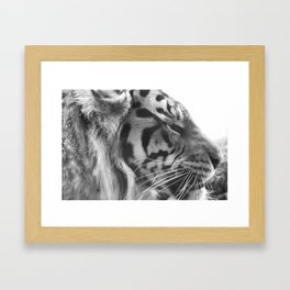 grr... Framed Art Print