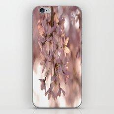 Cherry Blossom Spring iPhone & iPod Skin