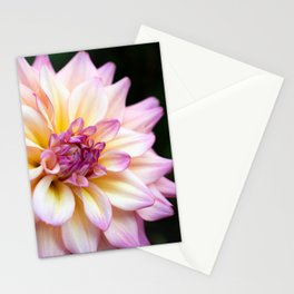 Spring Time Flower Stationery Cards