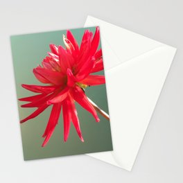 Red Imperfect Flower Stationery Cards