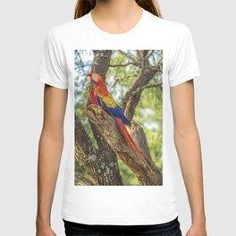 Guacamayas T-shirt