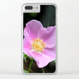 Pale Pink Wild Rose Clear iPhone Case