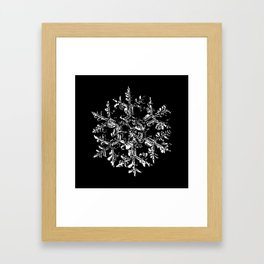 Snowflake vector - Gardeners dream black Framed Art Print