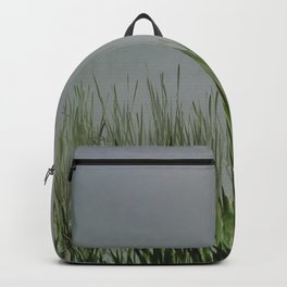 Old bullrush on a pond in the mist. Backpack
