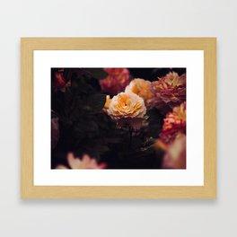 Bouquet Of Sunset Yellow orange Purple Flowers Framed Art Print