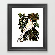 Bird watching Framed Art Print