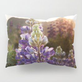 Mountain Lupine Photography Print Pillow Sham