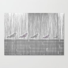 FIVE LITTLE BIRDS Canvas Print