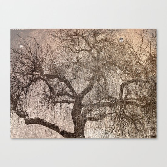 The Bewitched Tree 3 Canvas Print