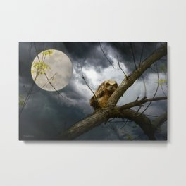 The seer of souls Metal Print