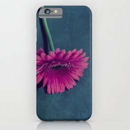 Gerbera for love iPhone Case