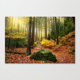 Path Through The Trees - Landscape Nature Photography Canvas Print